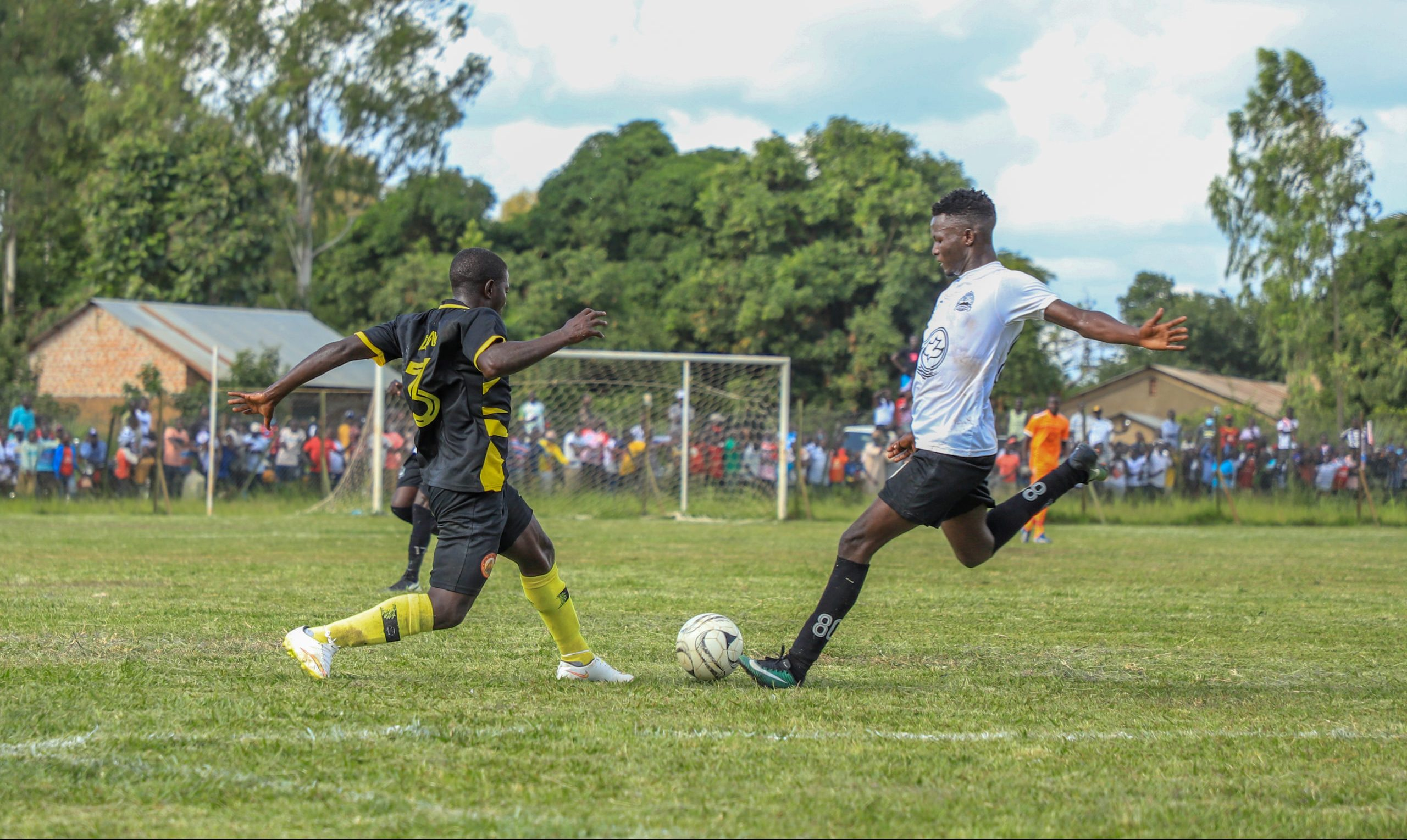 FBL: Promotion, survival all to play for on final day